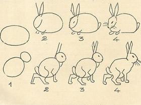 不同形态兔子简笔画画法图片步骤