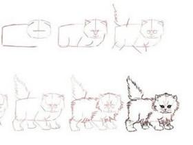 两种猫咪铅笔画画法教程