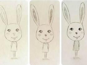 可爱的卡通兔子铅笔画画法教程