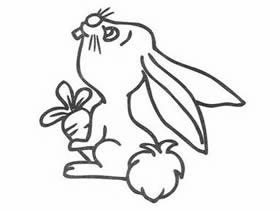 抱着大萝卜的兔子简笔画画法图片步骤