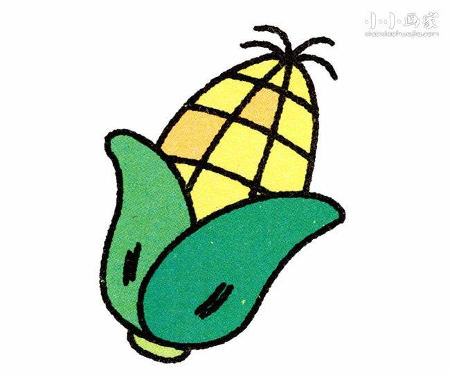 带叶子玉米简笔画画法图片步骤