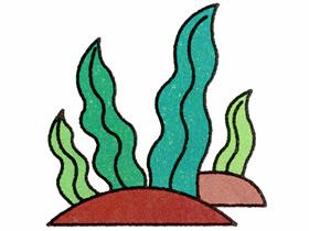 彩色水草简笔画画法图片步骤