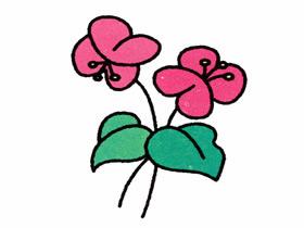蝴蝶兰简笔画画法图片步骤
