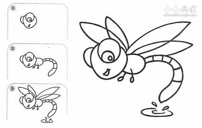 蜻蜓点水简笔画画法图片步骤图片