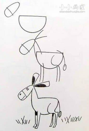 可爱小毛驴铅笔画画法教程- www.xiaoxiaohuajia.com