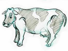 奶牛铅笔画画法教程
