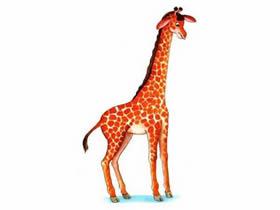 长颈鹿铅笔画画法教程