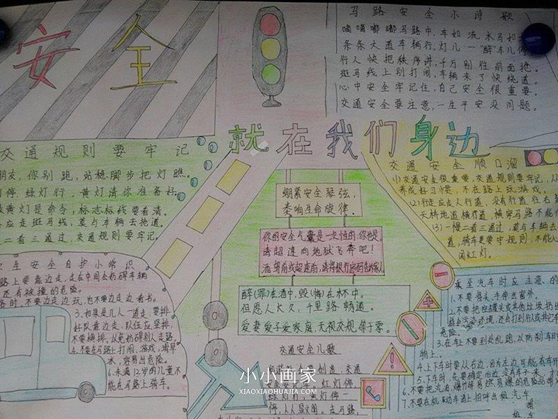 反邪教的资料_小学生呵护生命手抄报图片(2)_小小画家