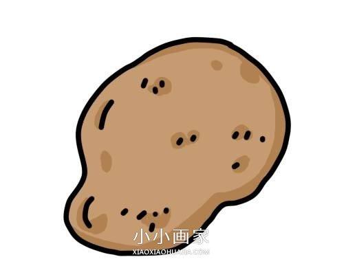 简单土豆简笔画画法图片步骤- www.xiaoxiaohuajia.com