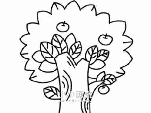 苹果树图片简笔画_简单苹果树简笔画画法图片步骤_小小画家