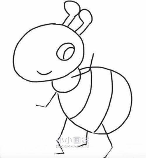 打招呼的小蚂蚁简笔画画法图片步骤 小小画家