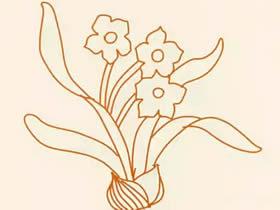 简单水仙花简笔画画法图片步骤