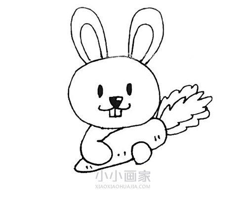 抱着胡萝卜的小兔子简笔画画法图片步骤