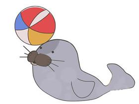 表演杂技海豹简笔画画法图片步骤