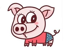 彩色卡通小猪简笔画画法图片步骤
