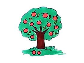 彩色苹果树简笔画画法图片步骤