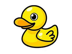 彩色小黄鸭简笔画画法图片步骤