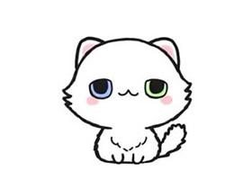 白色小猫咪简笔画画法图片步骤