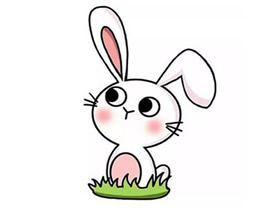 可爱小白兔简笔画画法图片步骤