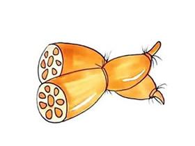 两个莲藕简笔画画法图片步骤