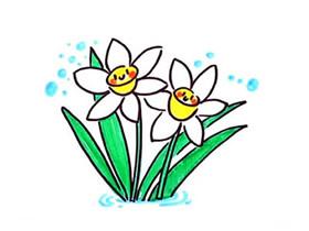 卡通水仙花简笔画画法图片步骤