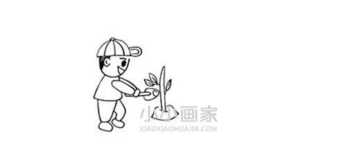 五一劳动节种树简笔画画法图片步骤 小小画家