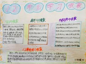 学习收获语文手抄报图片内容五年级