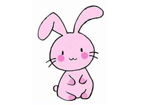 粉色兔子简笔画画法图片步骤