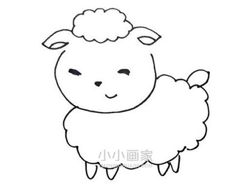 卡通小绵羊简笔画画法图片步骤- www.xiaoxiaohuajia.com