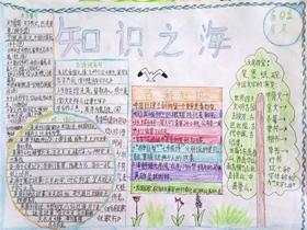 语文知识手抄报图片简单六年级