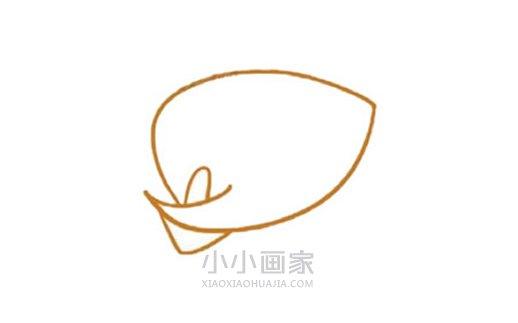 彩色马蹄莲简笔画画法图片步骤- www.xiaoxiaohuajia.com