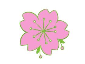 一朵樱花简笔画画法图片步骤