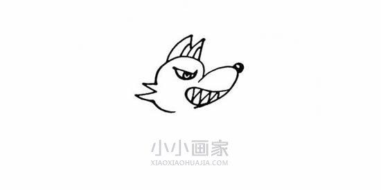 坏坏的大灰狼简笔画画法图片步骤- www.xiaoxiaohuajia.com