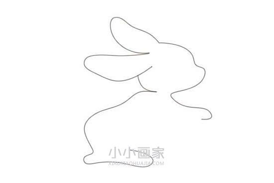可爱小白兔简笔画画法图片步骤- www.xiaoxiaohuajia.com
