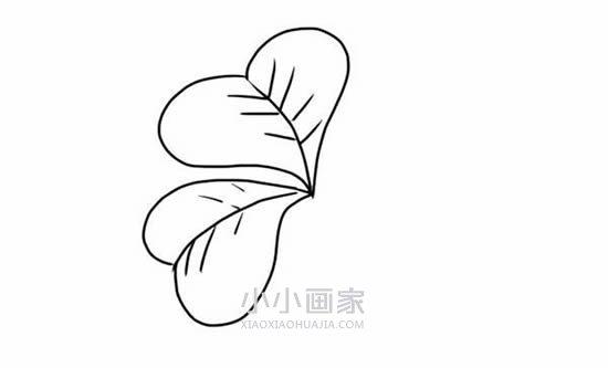四叶草简笔画画法图片步骤- www.xiaoxiaohuajia.com