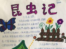 昆虫观察日记手抄报图片六年级