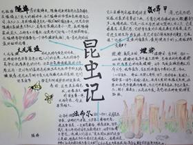 昆虫记手抄报图片简单