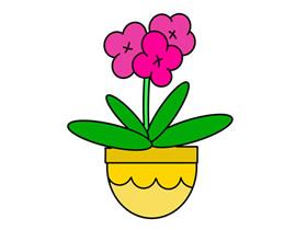 一盆兰花简笔画画法图片步骤
