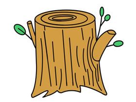 彩色树桩简笔画画法图片步骤