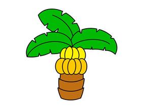 卡通香蕉树简笔画画法图片步骤