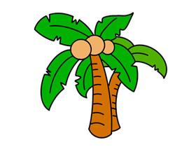 彩色椰子树简笔画画法图片步骤